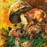 March Mushrooms Painting Sherry