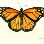 Monarch Butterfly Painting Juan