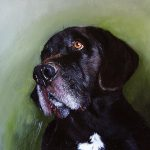 Oil Painting Dog Max Passed Away Ear
