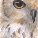 Owl Painting Eyes Original
