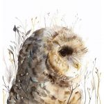 Owl Watercolor Art Spotted Print After