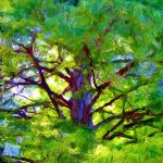 Paintings Artists Original Unusual Art Painting Trees Inner Light