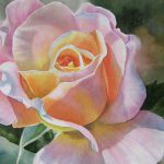 Pink Peach Rose Bud Painting Sharon