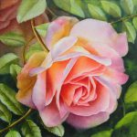 Pink Rose Watercolor Painting Oil Paintings Roses Flowers