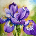 Purple Iris Wildflower Painting Marcia