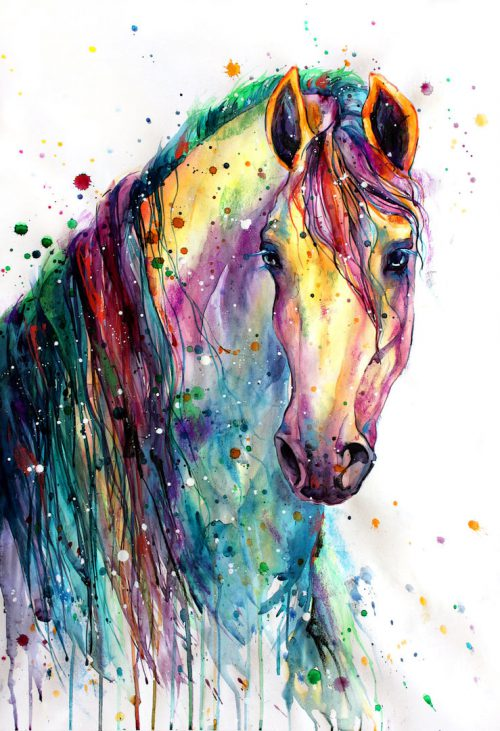 Rainbow Horsey Elenashved