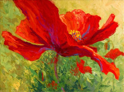 Red Poppy Marion