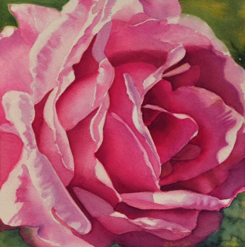 Rose Paintings Flower Watercolor