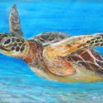 Sea Turtle Painting Mike
