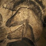 Stone Age Cave Paintings Chauvet France Javier