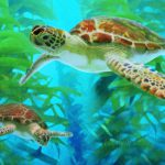 Swimming Sea Turtles Turtle Art Painting