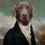 Thierry Poncelet Style Dog Portraits