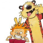 Things Didn Know Calvin Hobbes