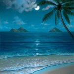 Tropical Beach Paintings Night Archive Thomas Deir Honolulu