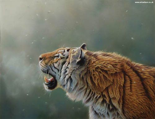 Wildlife Art Eric Wilson