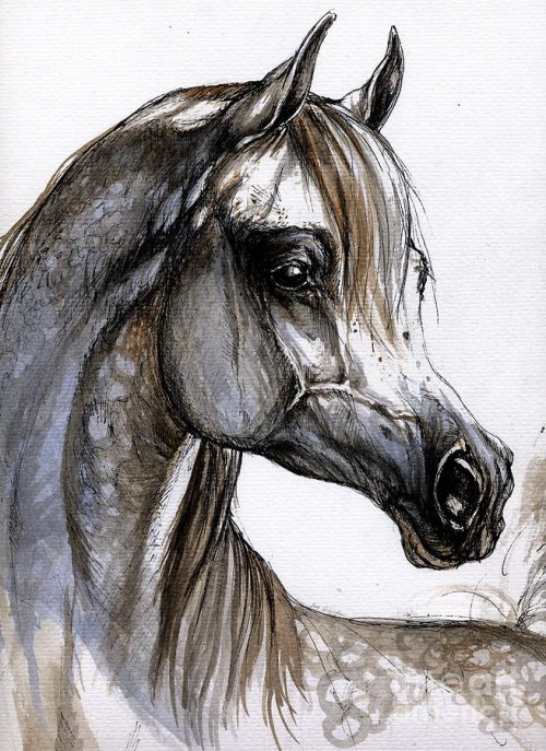 Arabian Horse Painting Angel