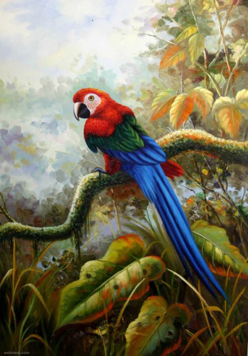 Beautiful Bird Paintings Art Works Your