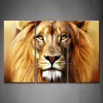 Best Collection Lion Wall Art