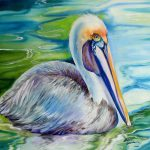 Brown Pelican Louisiana Painting Marcia