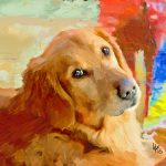 Dog Painting Portraits Paintings Photos