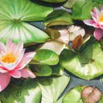Exclusive Watercolor Flower Paintings