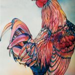 Fine Feathers Watercolor Ink Jeannie Vodden