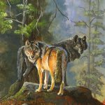 Gray Wolves Painting Jeff