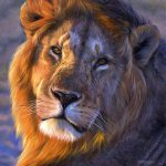 Interesting Lion Facts Fact