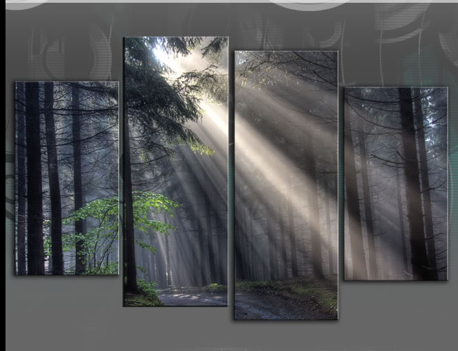 Large Sun Rays Forest Trees Split Canvas Art