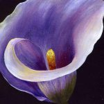 Lavender Calla Lily Painting Tracey Harrington