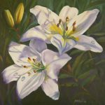 Marion Floral Art Blog Sunlit White Lilies Oil
