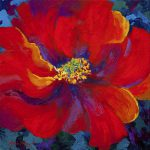 Passion Red Poppy Painting Marion