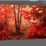 Red Leaves Autumn Forest Single