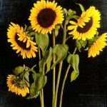 Shopping David Hardy Sunflowers Painting Paintings