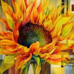 Sunflower Canopy Hailey