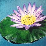 Water Lily Paintings Photos